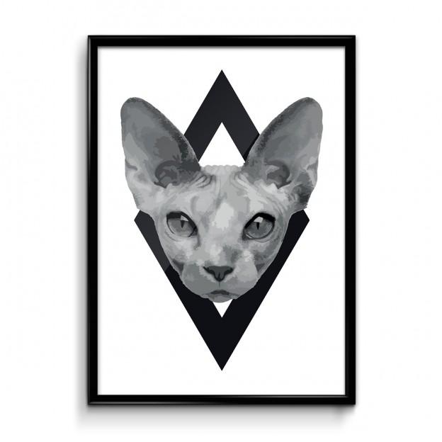 plakat_logo_cica_frame