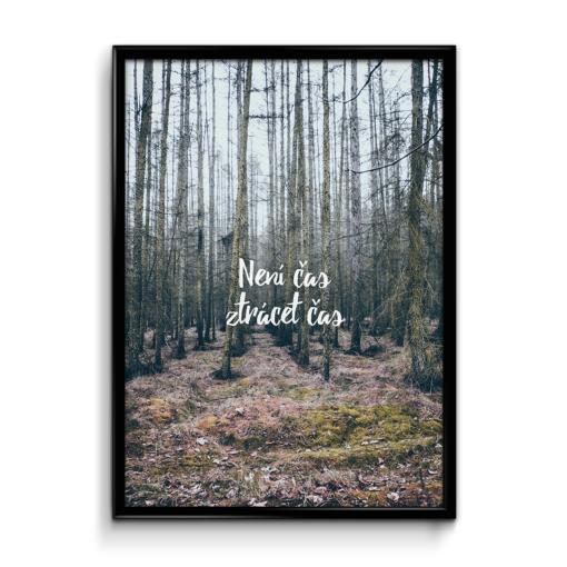 Číča v kleci | Není čas ztrácet čas plakát