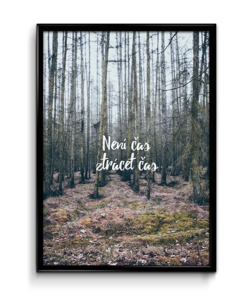 Číča v kleci   Není čas ztrácet čas plakát